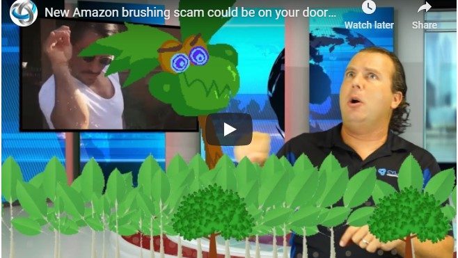 New Amazon brushing scam could be on your doorstep
