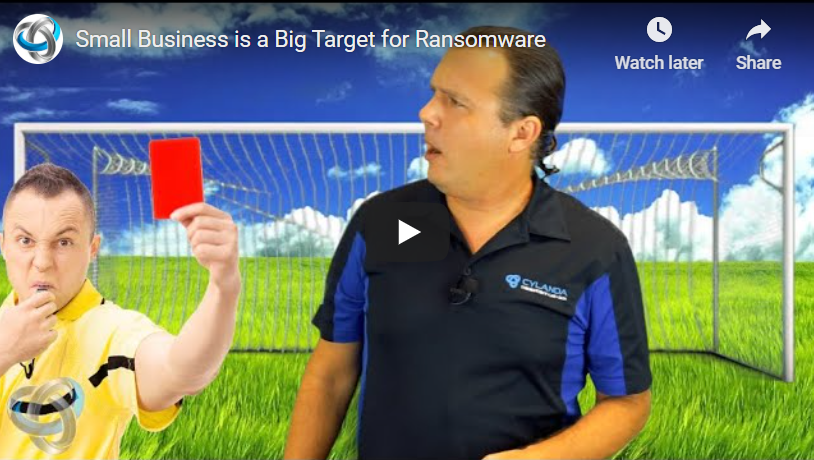 Small Business a Big Target for Ransomware